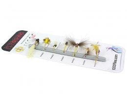 FLY SET - PHY Raspini - by insect families
