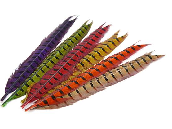 PHEASANT TAIL FEATHER 1° CLASS hotfly - 1 pc. - ca. 50 cm