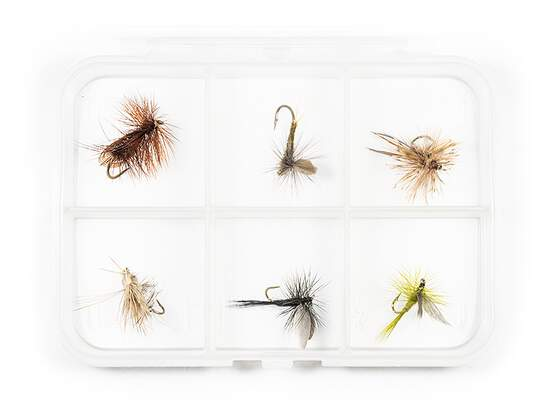 Dry fly selection MIX CLASSIC V7 - 6 flies with box