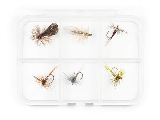 Dry fly selection MIX CLASSIC V10 - 6 flies with box