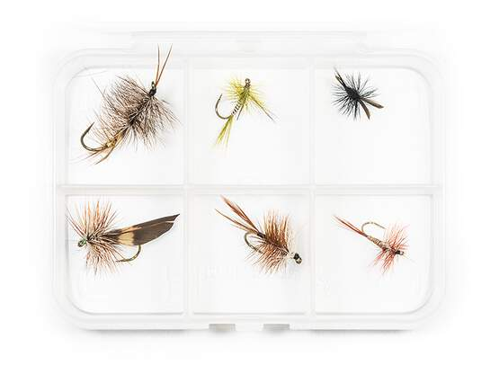 Dry fly selection MIX CLASSIC V11 - 6 flies with box