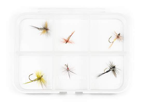 Dry fly selection UP-WINGED - 6 flies with box