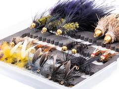 Flies selection TROUT STANDARD - 24 flies with box