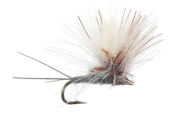 CDC Hoppers Claret Still Water River Trout Fly Fishing Dry Flies Grayling Chub