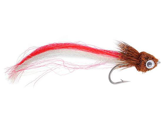 Firetail Brown