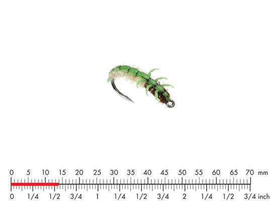 Caddis Larva L4 Green 14mm