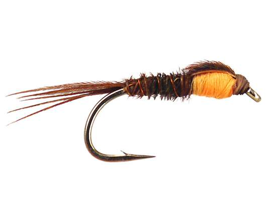 Pheasant Tail Orange Nymph