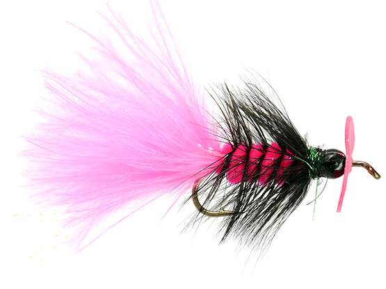 Pink Hot Wooly Bugger Evo