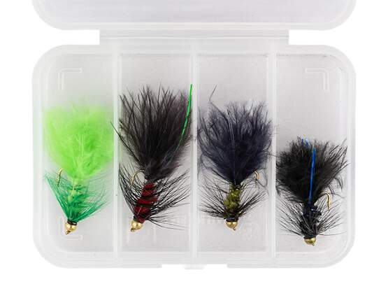 Flies selection WOOLY BUGGER SMALL V1 - 4 flies with box