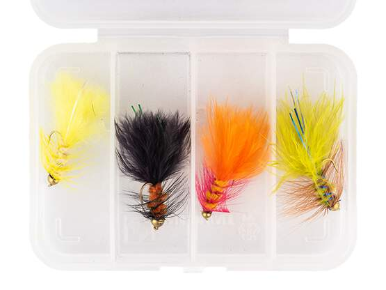 Flies selection WOOLY BUGGER SMALL V2 - 4 flies with box