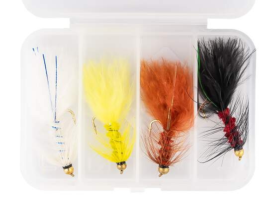 Flies selection WOOLY BUGGER LARGE V1 - 4 flies with box