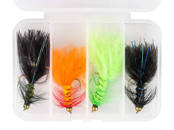 Flies selection WOOLY BUGGER LARGE V2 - 4 flies with box
