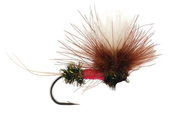 Tackle Fly Box Assorted Winged Dry Flies for Trout Fly Fishing Starter Kit