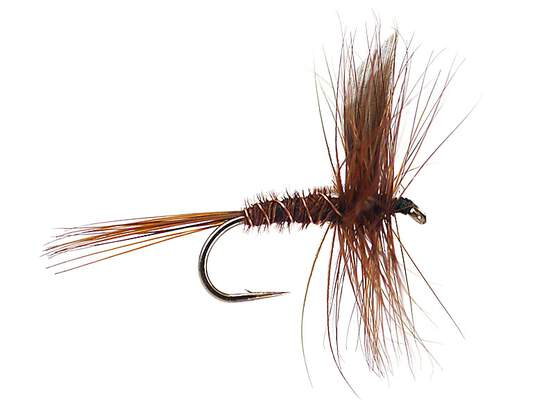 Pheasant Tail Winged