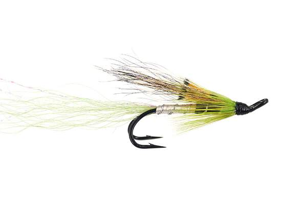 Ally Shrimp Greenyellow
